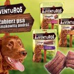 darmowy smakolyk dla psa